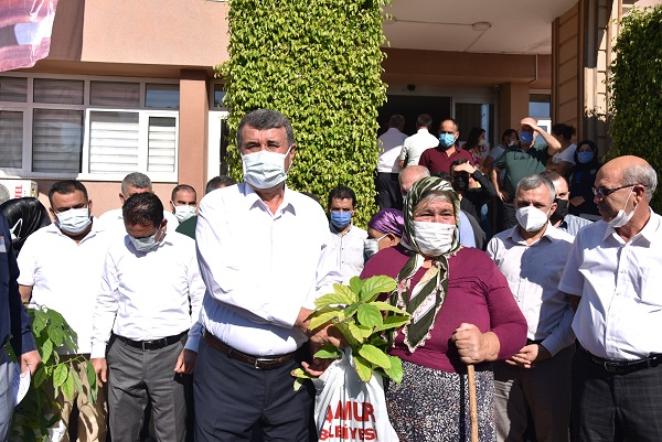 Anamur Belediyesi Kadın Çiftçilere Ücretsiz Avokado Fidanı Dağıttı