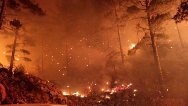 Orman yangını mağdurlarıyla dayanışmak için Mersin'de büyük yardımlaşma kampanyası