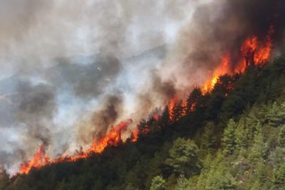 Antalya ilçesi Gündoğmuş'taki yangın, Karaisa Köyü'ne ulaştı.