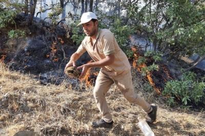 Bugün çıkan 6 orman yangını kontrol altında
