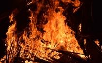 Muğla Milas'ta çıkan yangın kontrol altına alındı
